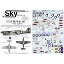 RE-RELEASED! CURTISS P-40