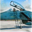 1/48 Plus Model Ladder for McDonnell F-15 Eagle  , Injection